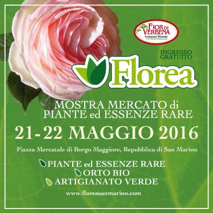 Florea1