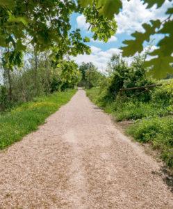 sentiero bici